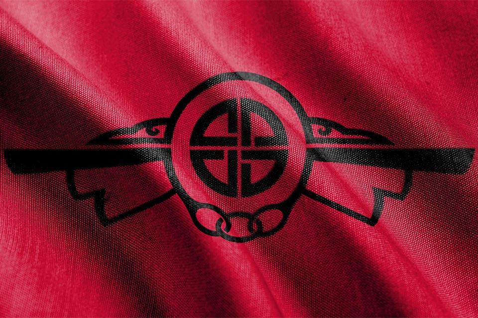 Gudavik flag